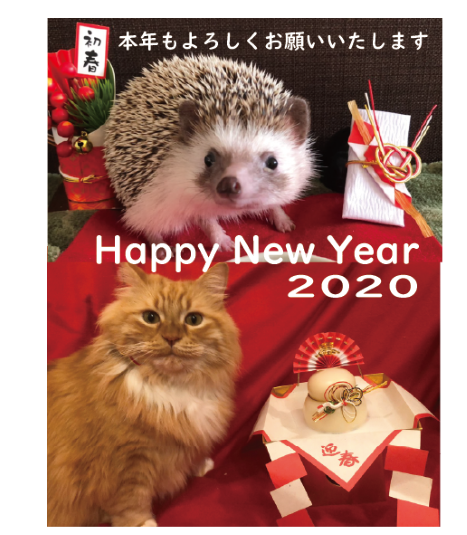 🎍Happy New Year 2020🎍